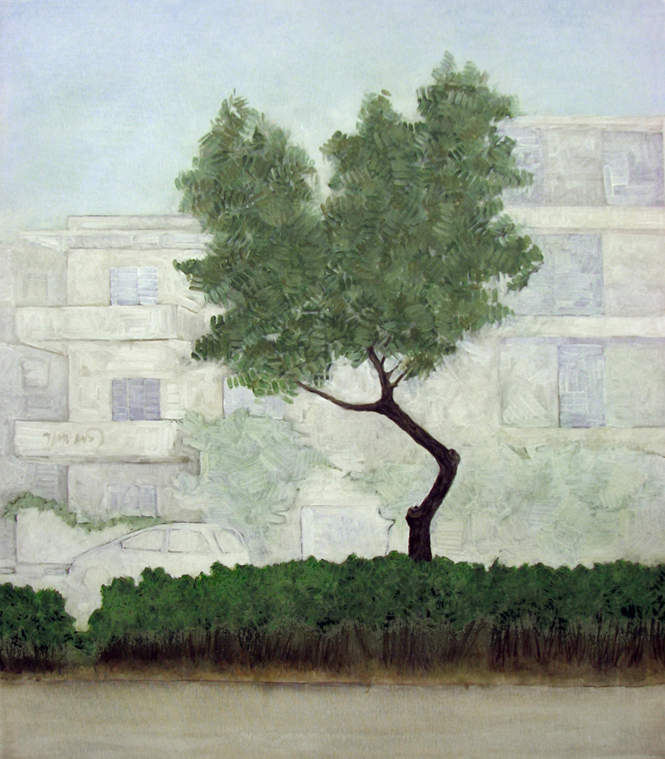 Urban Olive Trees XI - 2013