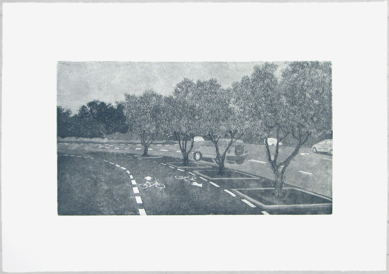 Urban Olive Trees XVI - 2