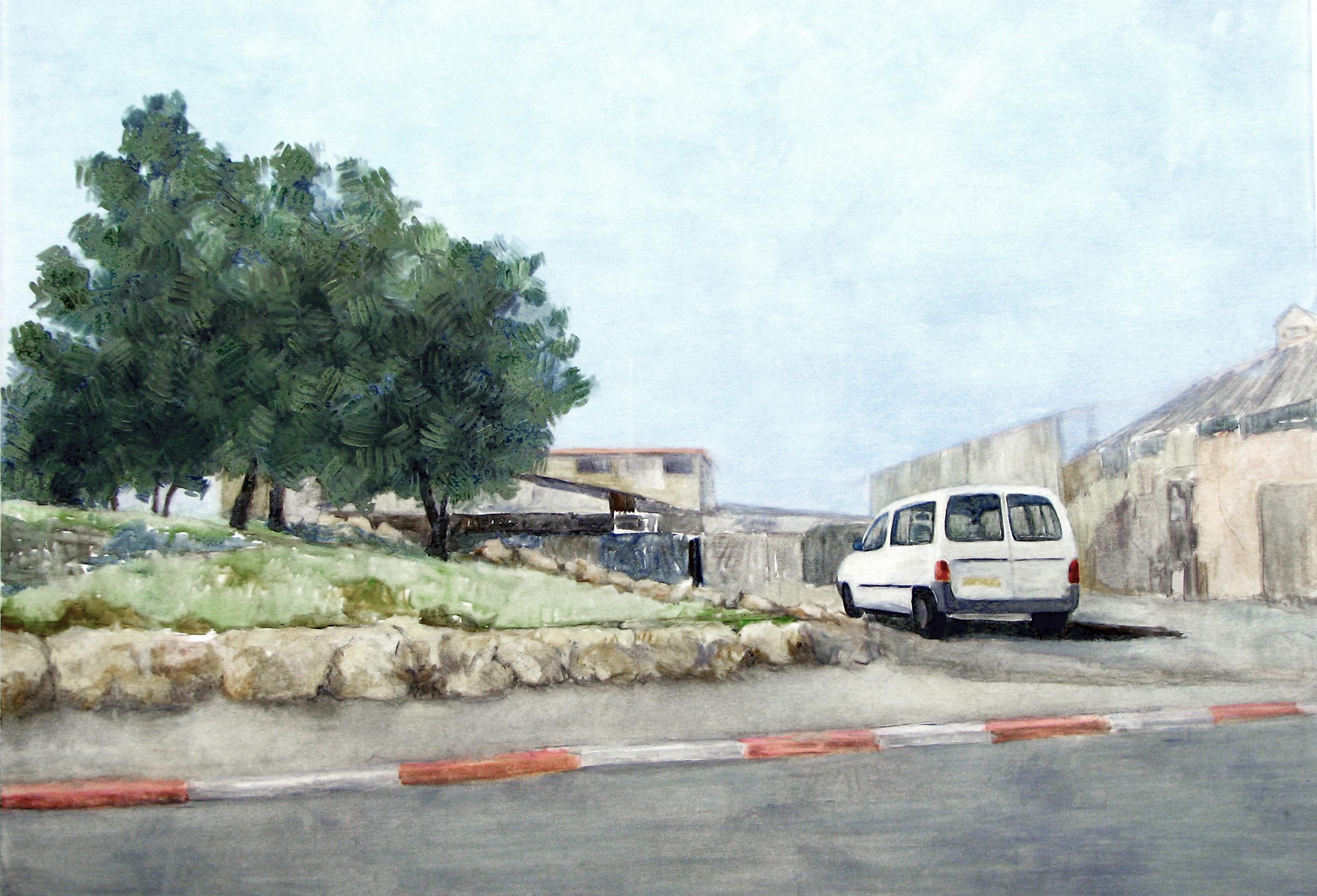 Urban Olive Trees IX - 2013
