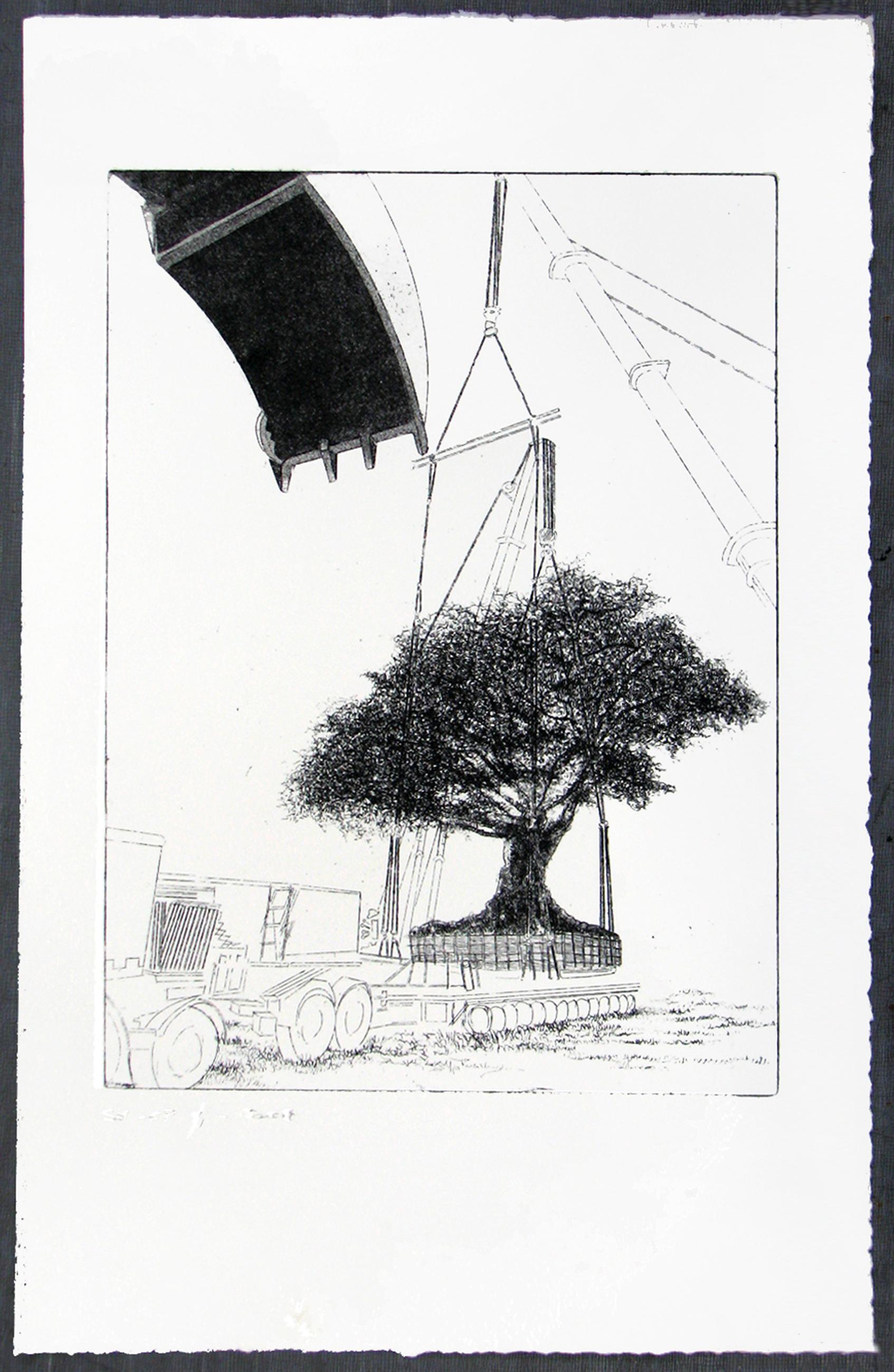 Urban Tree II - 2008
