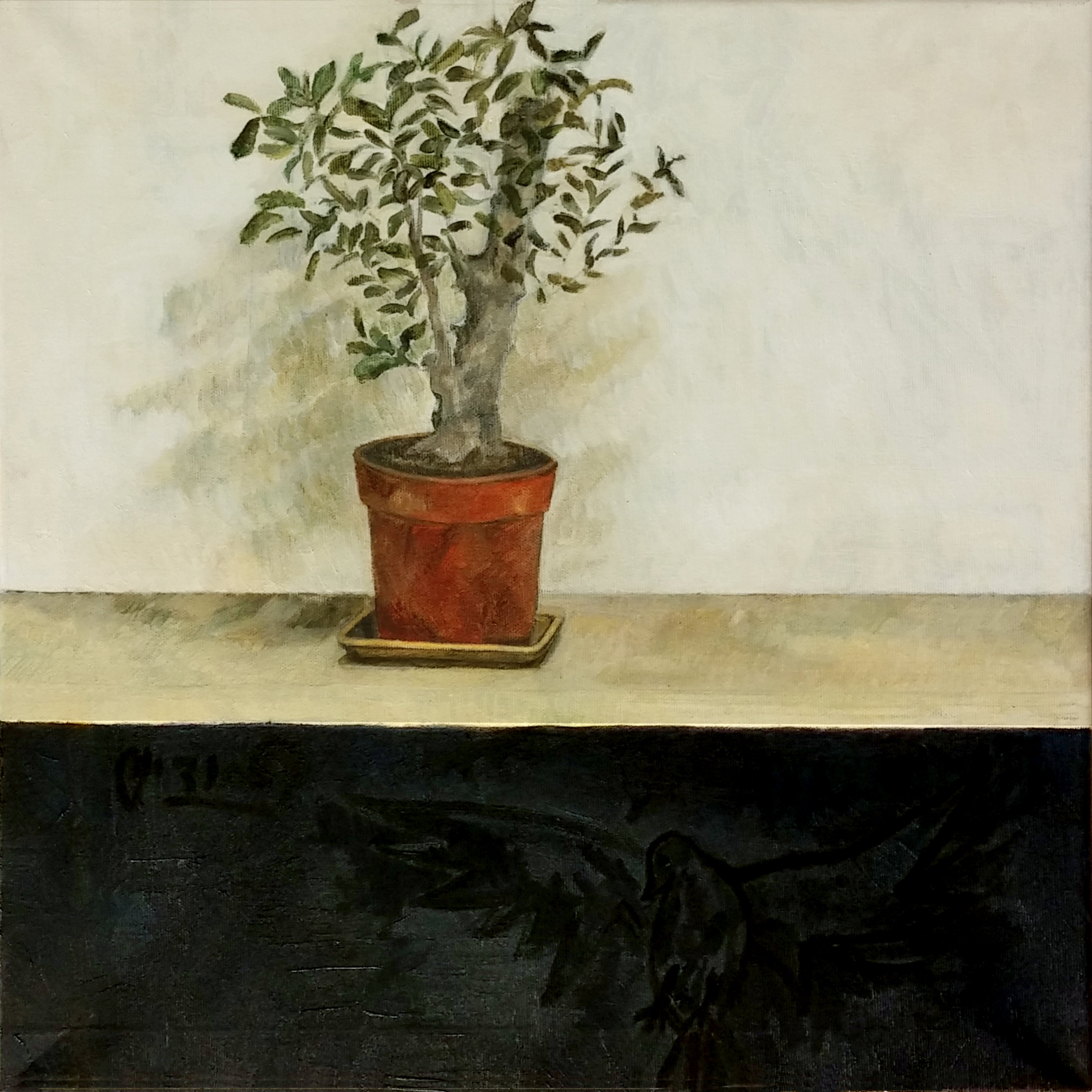 Olive Tree in a Flower Pot II - 2017