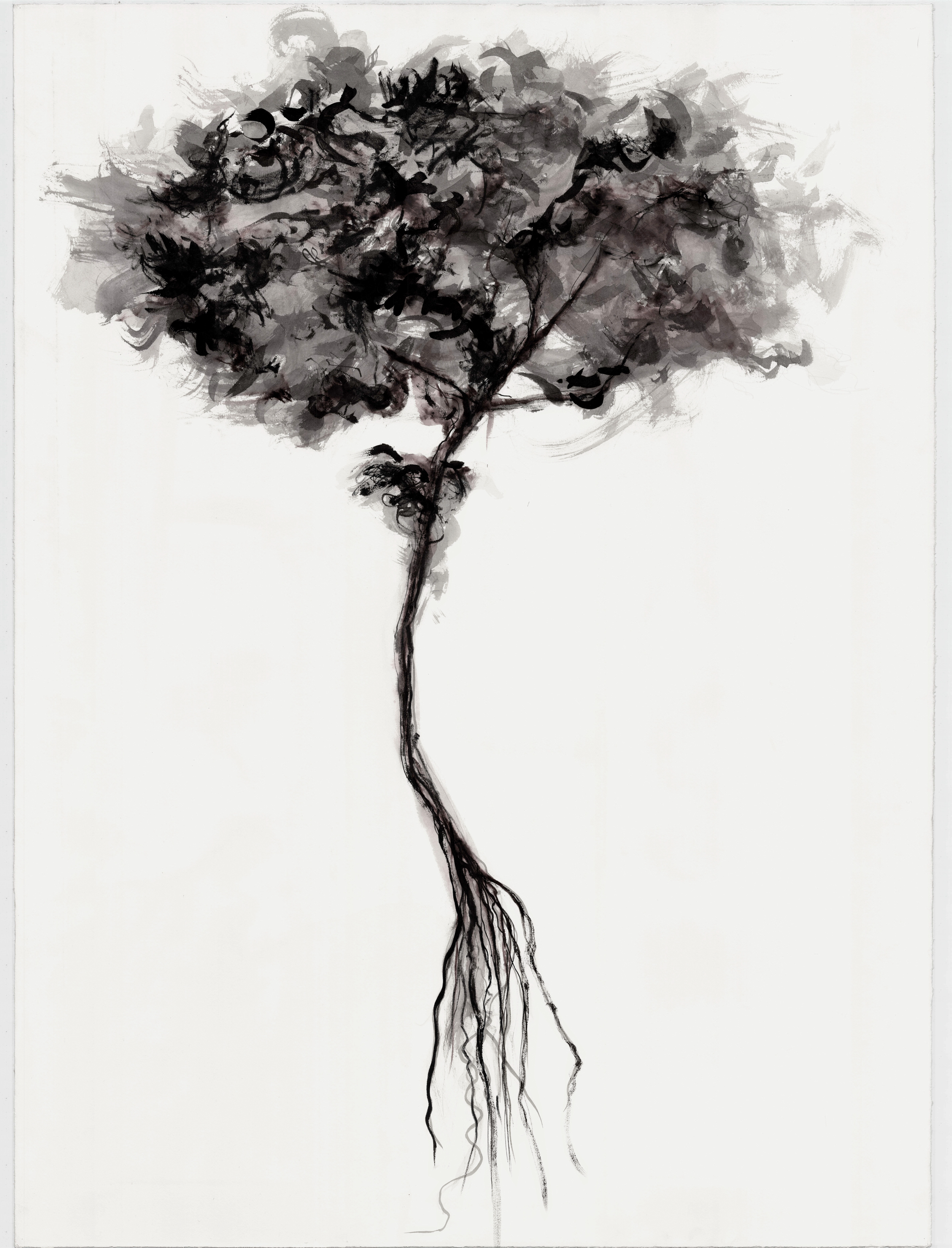 Uprooted IX - 2010