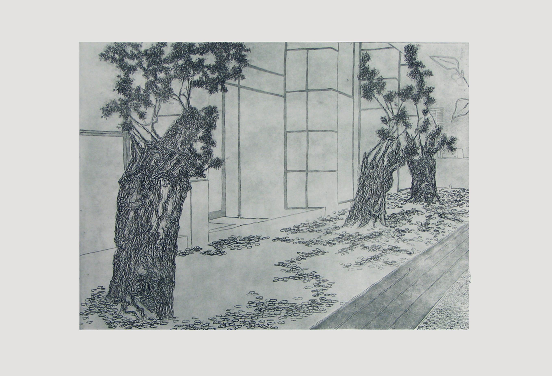 Urban Olive Trees V - 2012