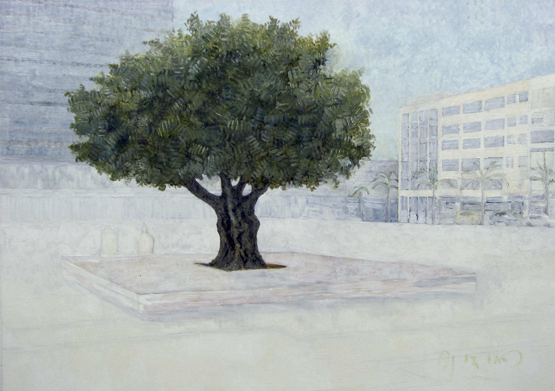 Urban Olive Trees VII - 2013