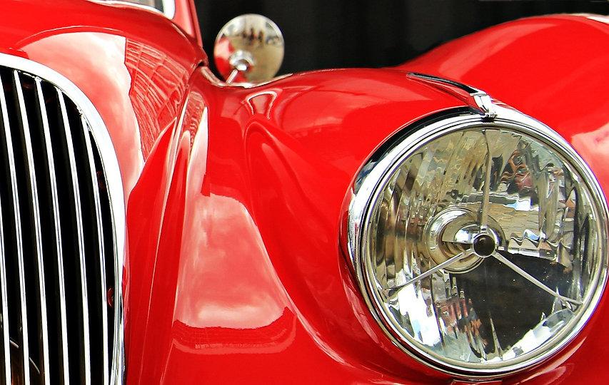 jaguar-1576109_1920.jpg