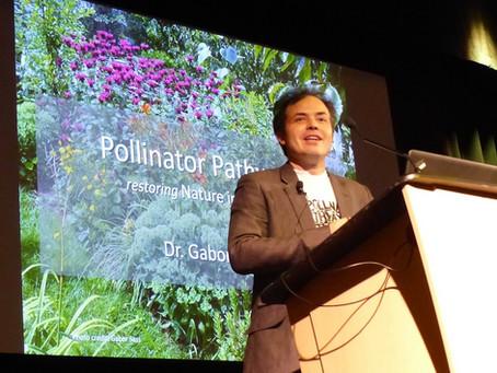 Pollinator Pathways Take Ecosystem Scientist Down A New Path