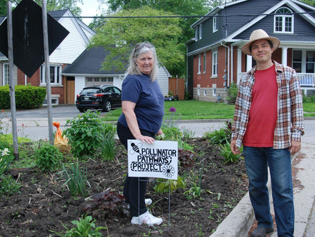 Growing A Community With The Pollinator Pathways Project