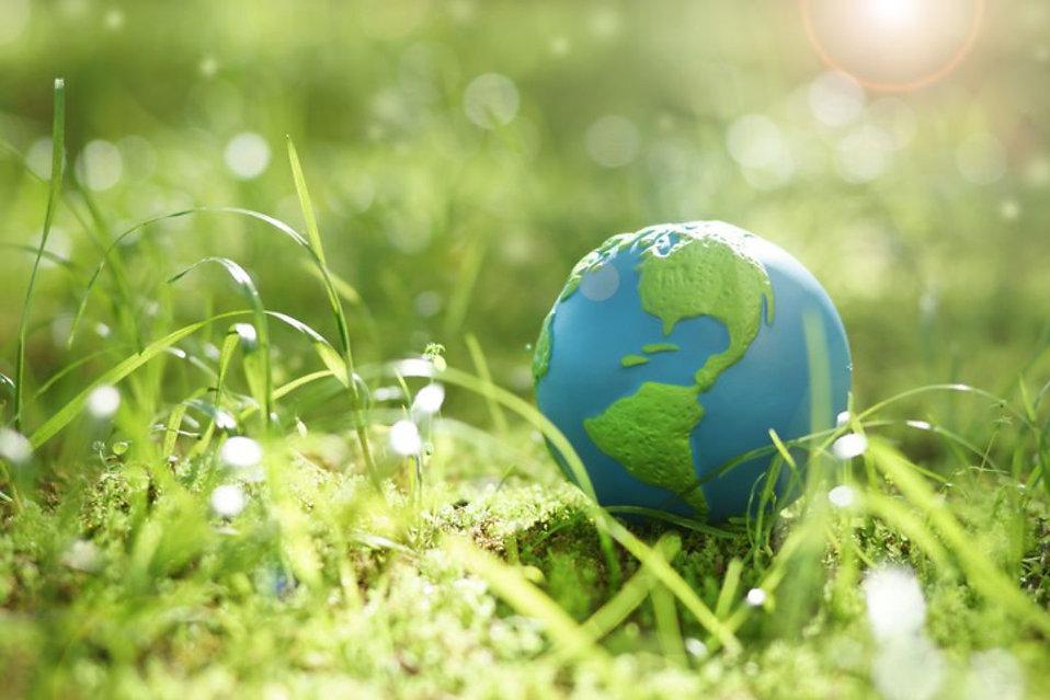 medio-ambiente-maia.jpg