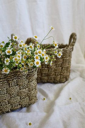 Set of Rectangular Seagrass Baskets
