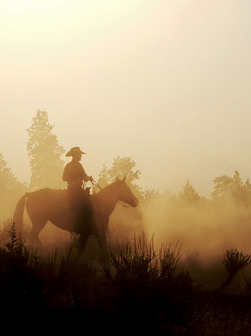 Cowboy and his horse on the early mornin
