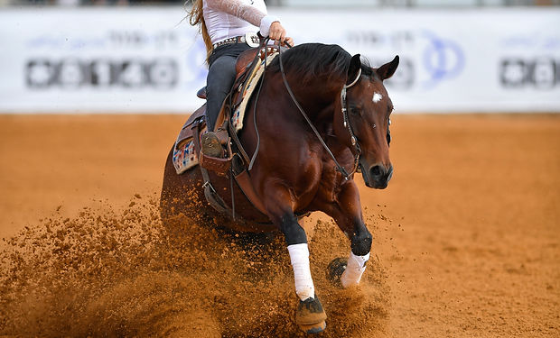 The front view of a rider in cowboy chap