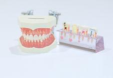 やなせ歯科・診療の案内