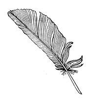 feather-png-vector.png