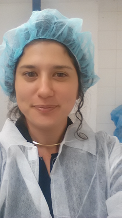 יום במעבדה אייר
