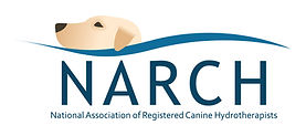 Canine Hydrotherapy in Northamptonshire, Oxfordshire, Warwickshire.