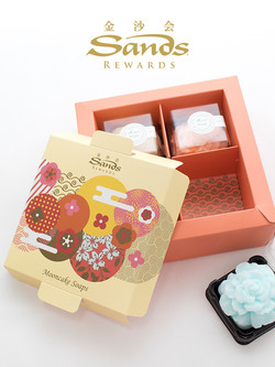 mooncake soap_cover