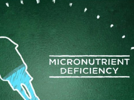What Am I Missing? Micronutrient Deficiencies - Part 1