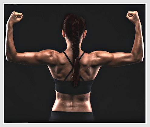 Fitness Coaching - Package of 15+ Sessions