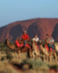 ARR_web_camel-tours.jpg