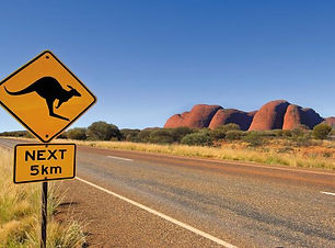 australia_northern-territory_kangaroo_ro