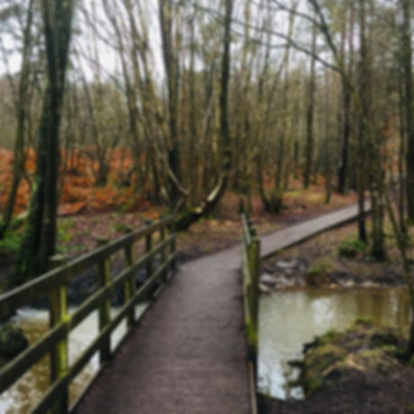 RSPB Broadwater Warren. Nature Reserve. Trails. Free family fun. Kid child friendly adventure. Kent and Sussex.