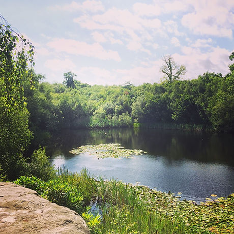 Lake Wood, Free days out Sussex, Uckfield, East Sussex