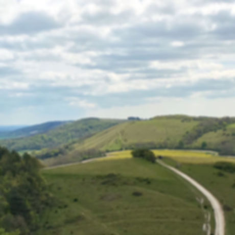 Free things to do West Sussex Harting Down near Petersfield. Family outdoor adventure