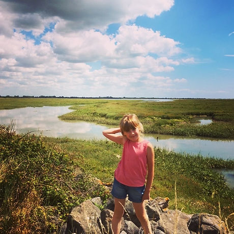 Bird watching. Nature reserve. Chichester. Free family fun. Day out with the kids