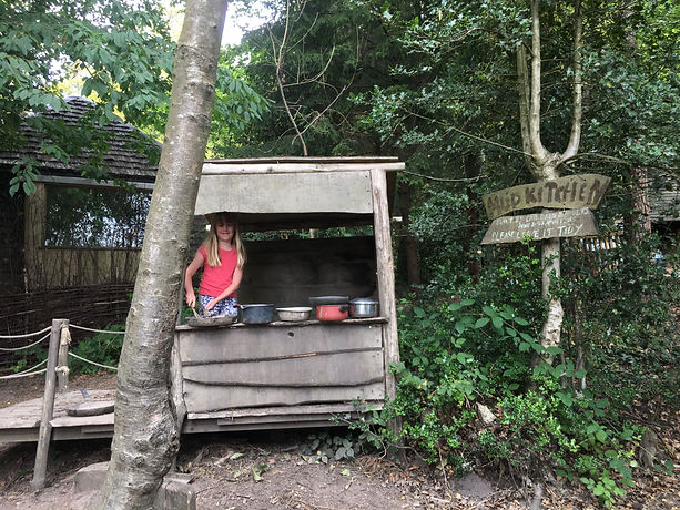 Wilderness Wood, Uckfield, East Sussex, Play area, low cost, place to visit Sussex, forest
