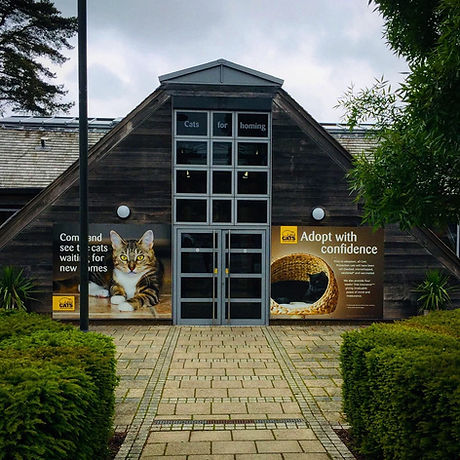 Activities for children nature trail, animals, indoor, Haywards Heath Sussex