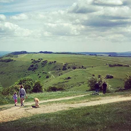 South Downs National Park. Mud-free walking. Family walking and cycling. Stunning views.