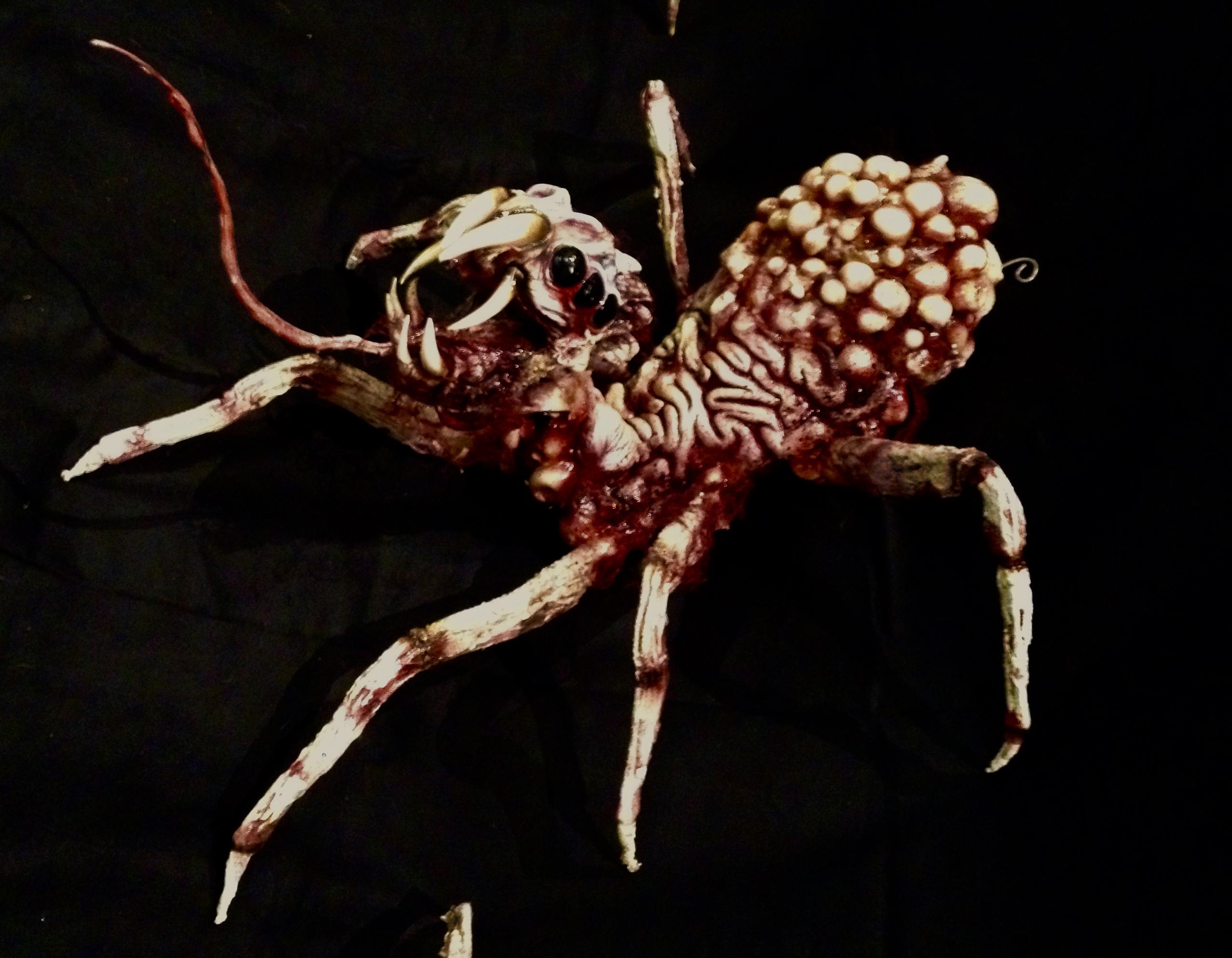 SPIDER BRAIN W EGGS