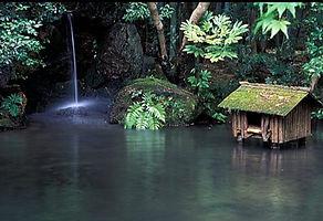 kyoto-garden-p-037_3_edited.jpg