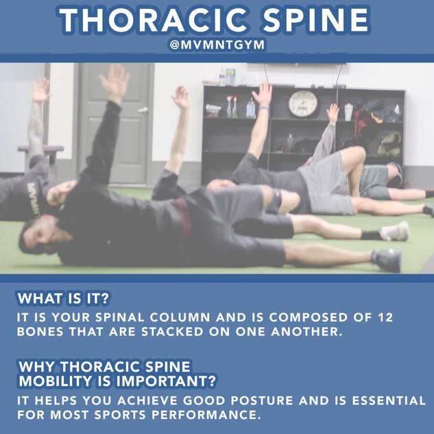 MVMNT Thoracic Spine.jpg