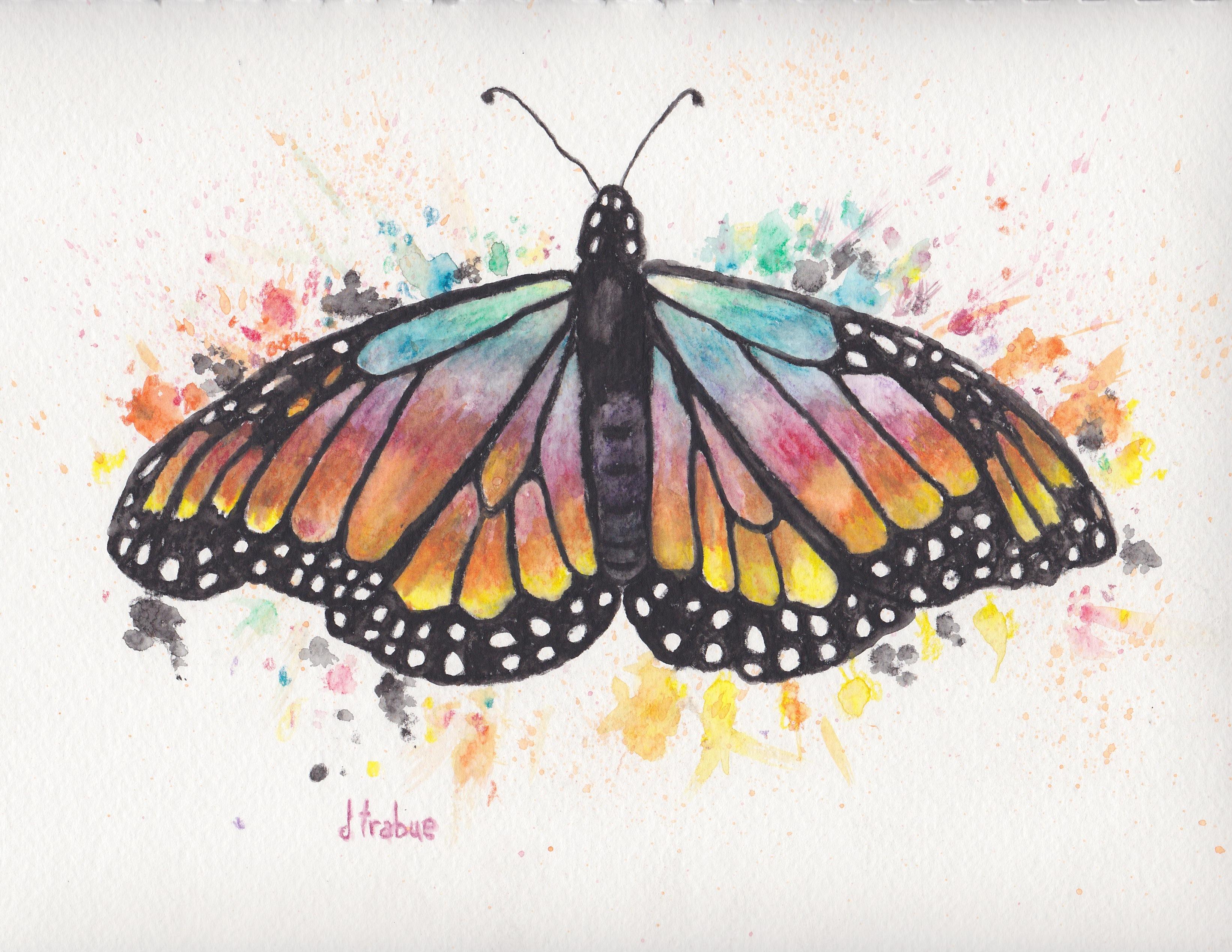 RainbowButterfly1