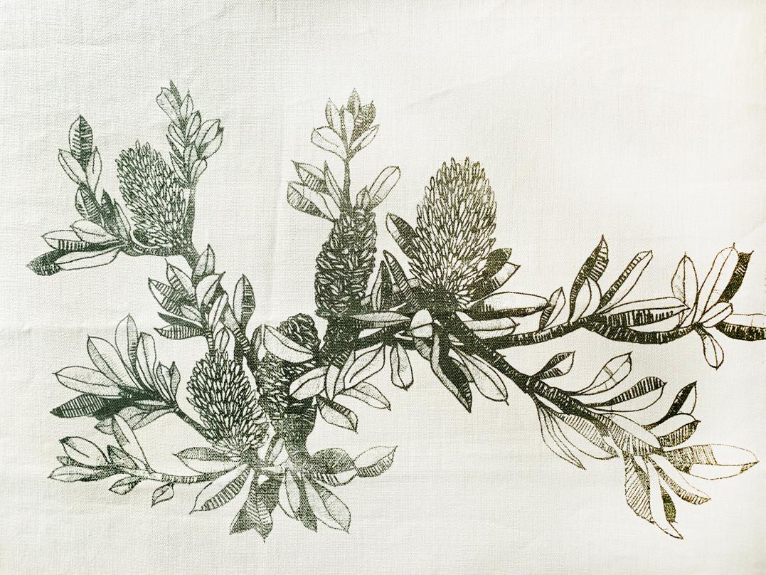 Banksia sepia multiprint.jpg
