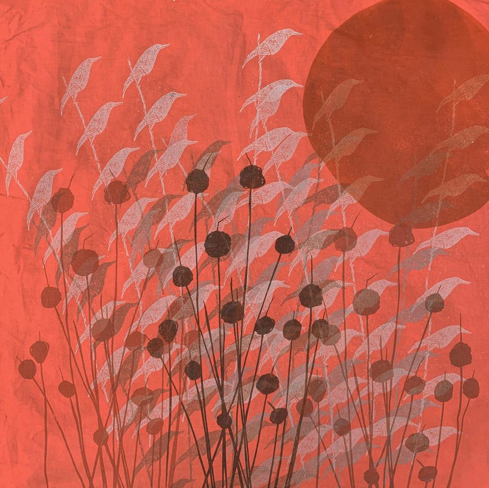 Moonbirds moon + buttongrass.jpg