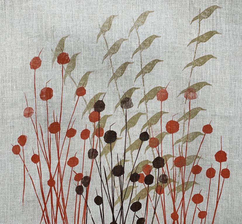 Moonbirds&buttongrass.jpg
