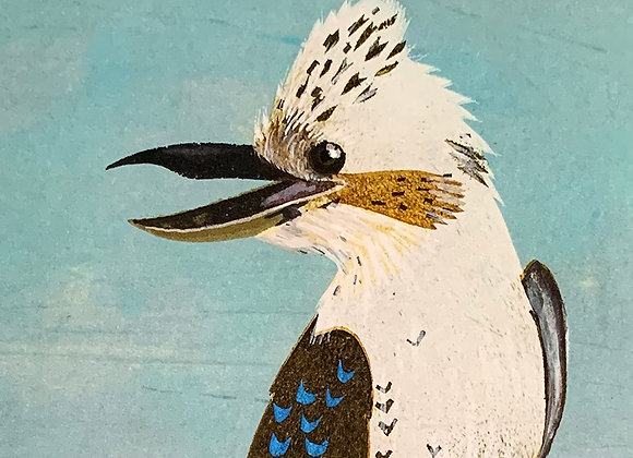Kookaburra ( AKA Dacelo Gigas)