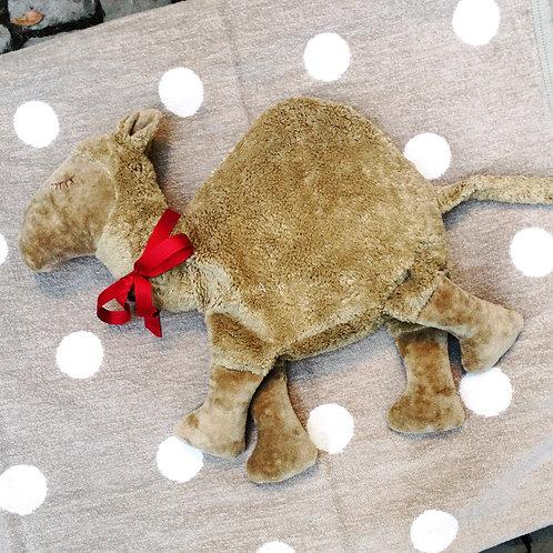 Kamel zum kuscheln