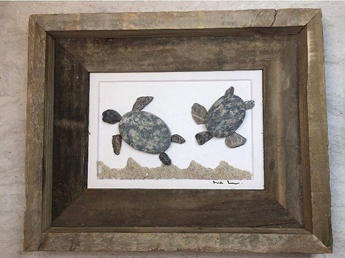Mainely Tidal Turtles