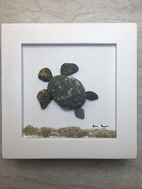 Mainely Turtle 4x4