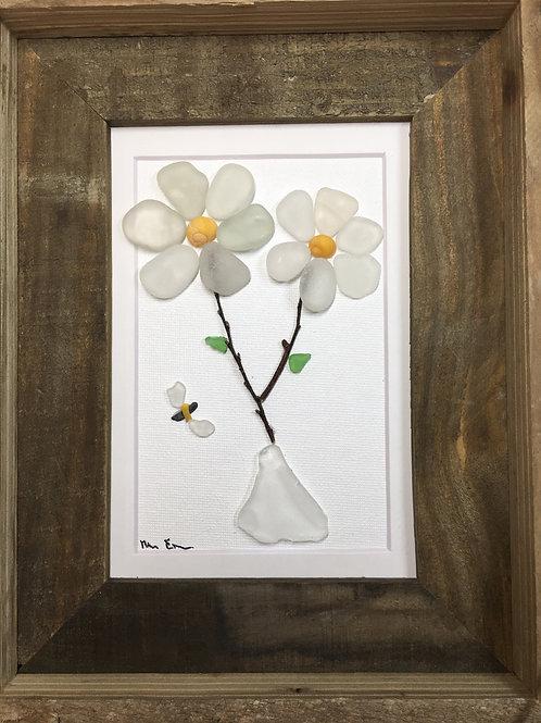 Maine Daisy