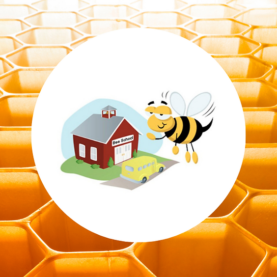 Bee School