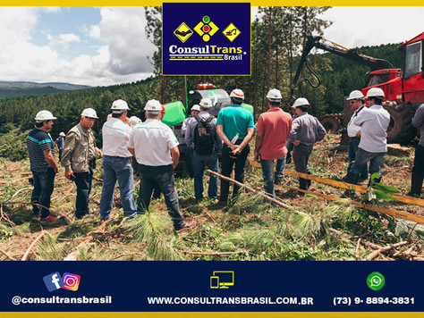 Consultrans Brasil - Ldv - 01 (25).jpg