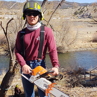 Tree work along the Arkansas River