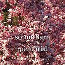 memorial cover.png