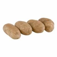 Potatoes MountainKing - 4 ct | $1.00/potato