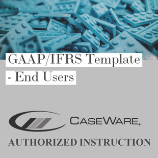 CaseWare Financials template | End Users