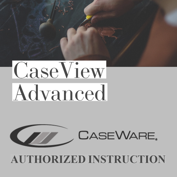 CaseView Advanced